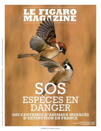 Le Figaro Magazine du 25 mai 2018