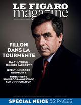 Le Figaro Magazine du 14 novembre 2014
