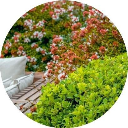 Texte : Catherine Delvaux Photos : GAP Photos//Matteo Carassale - Design : Frassinago Lab,> Plus d'idées pour aménager sa terrasse sur detentejardin.com