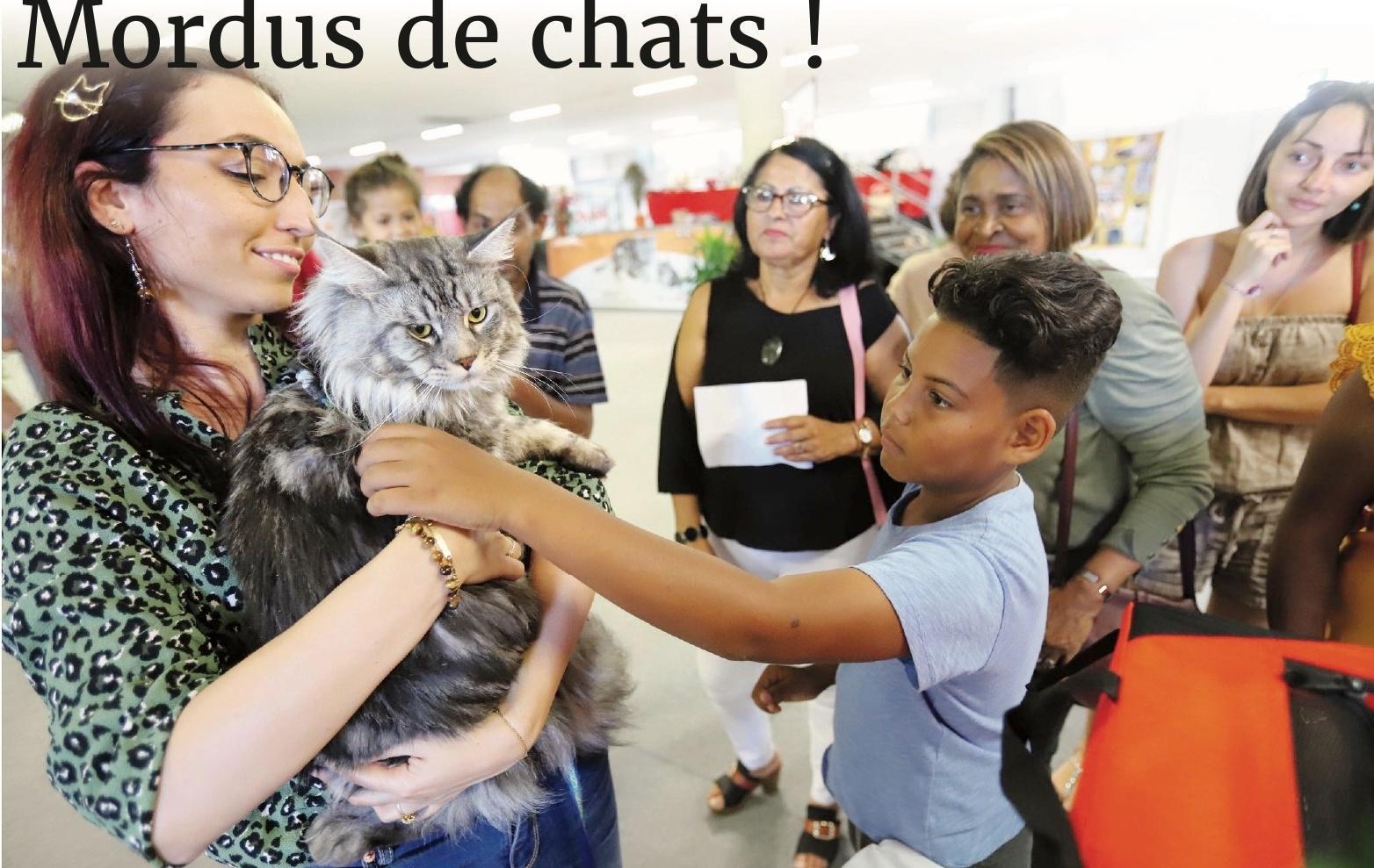 Dossier : Cécile Moutiama Photos Stephan Lai Yu
