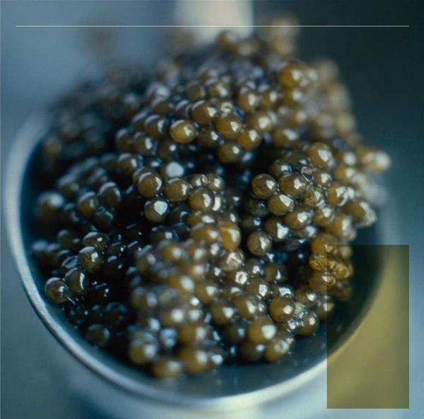 Le caviar vu par Christophe Hay