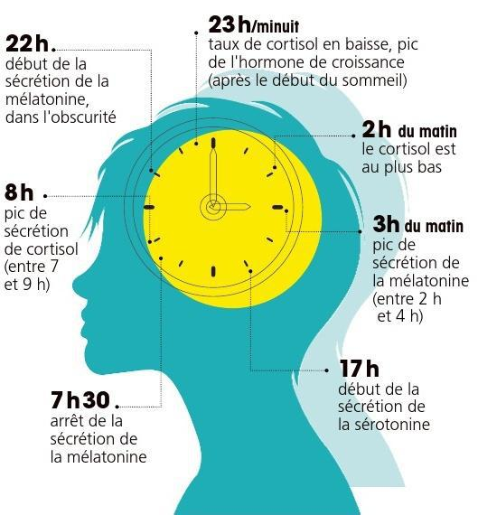 DES HORMONES À L'HEURE ! | SFR Presse