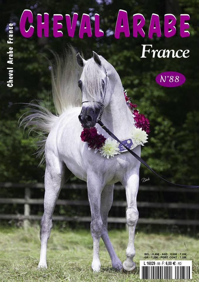 Abonnement Cheval Arabe France avec le BOUQUET ePresse.fr